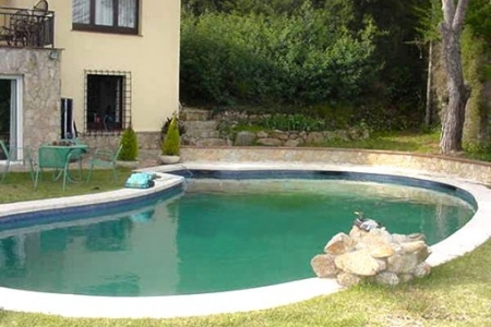 Lagoon-shaped swimming pool