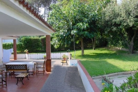 View into garden and on canopied terrace with