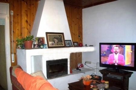 House-Living room-chimney-Roses