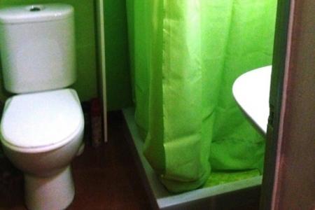 Apartment-Bathroom-Roses